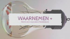 RWZ Coaching + waarnemen